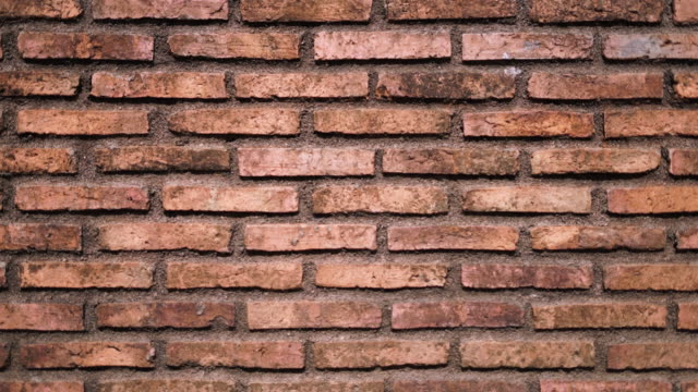 old brick wall background dolly shot - tile stock videos & royalty-free footage