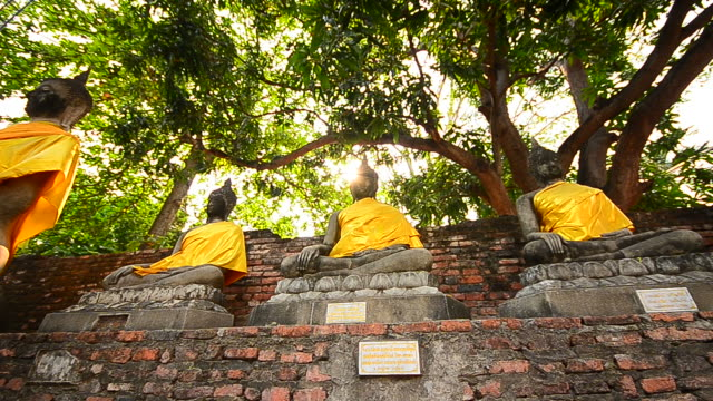 Old Buddha Statues at Historical Park of Ayutthaya, Thailand