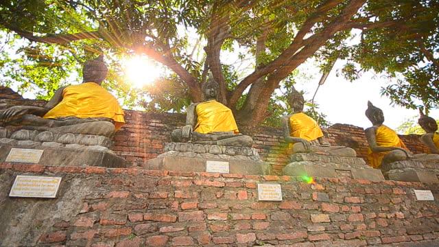 旧仏像で歴史公園のアユタヤ、タイ - 寺院点の映像素材/bロール