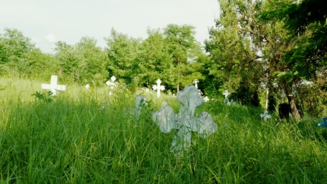 緑の草原に覆い尽くされた石の白い十字架を持つ古い墓地 - 十字架点の映像素材/bロール