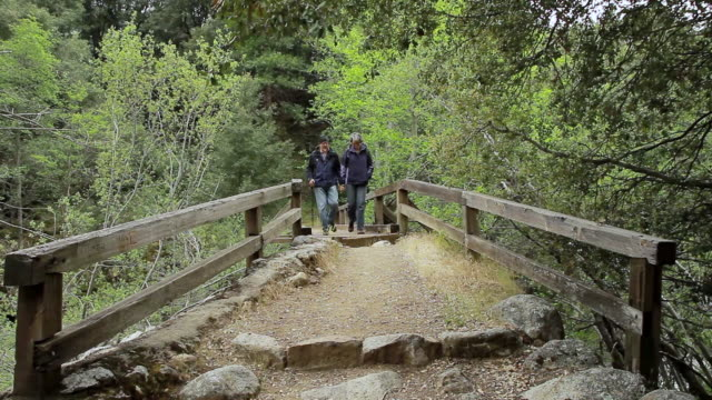 MS Old couple hiking on wooden bridge  / Los Angeles, California, United state