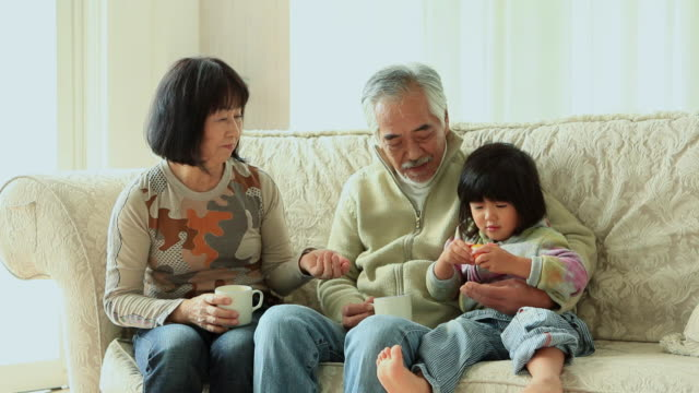ms old couple playing and relaxing with their granddaughter  / fuji kawaguchiko, yamanashi, japan - 祖父点の映像素材/bロール
