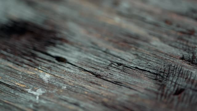 old dark wood material close-up. dolly shot - wood stain stock videos & royalty-free footage