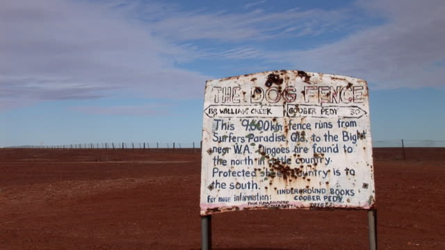 MS Old dingo fence in Simpson Desert, Northern Territory, Australia