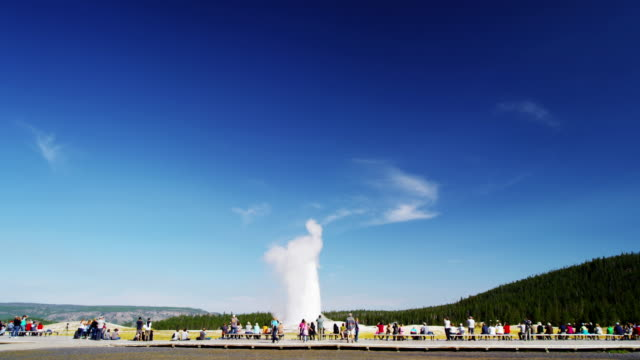 old faithful geyser yellowstone national park wyoming usa - old faithful stock videos & royalty-free footage