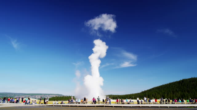 old faithful geyser yellowstone national park wyoming usa - yellowstone national park stock videos & royalty-free footage