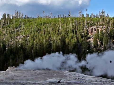 old faithful geyser-ntsc - old faithful stock videos & royalty-free footage