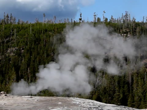 old faithful - pal - old faithful stock videos & royalty-free footage