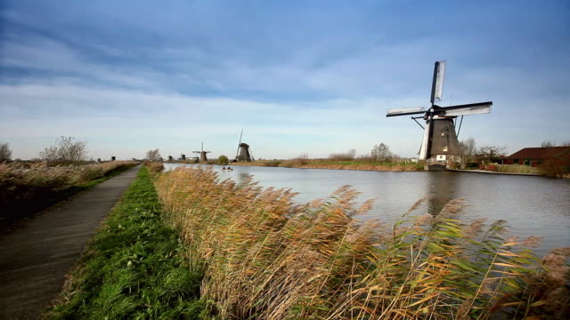 ws old fashion windmills by canal, grass blowing on wind in foreground / kinderdijk, holland, netherlands - mill stock videos & royalty-free footage