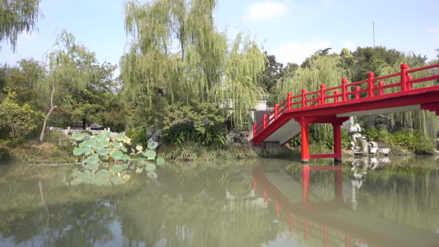 old fashioned bridge in chinese garden - classical chinese garden stock videos & royalty-free footage