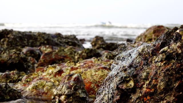 4k: gamla fisknät på stranden - kommersiellt fisknät bildbanksvideor och videomaterial från bakom kulisserna