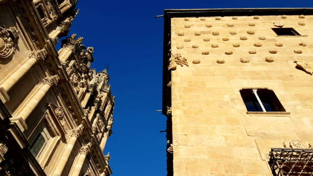 Old gothic library in Salamanca. Sandstone.Casa de las Conchas. Outside.