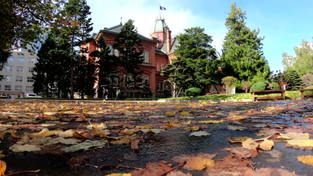 old hokkaido government building (akarengo) - pinaceae stock videos & royalty-free footage