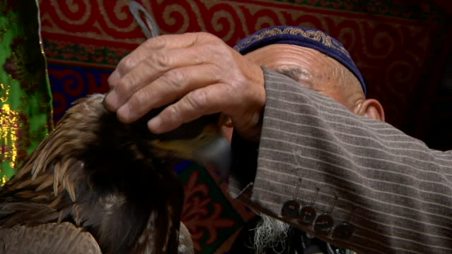 old kazah man with eagle on his arm inside kazakh house - kazakhstan stock videos and b-roll footage