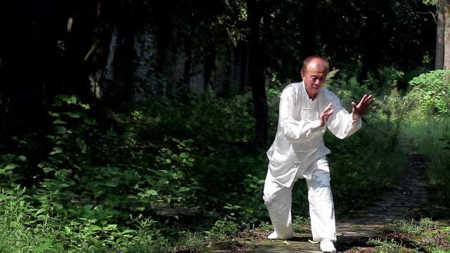 公園で老人演習太極拳 - カンフー点の映像素材/bロール