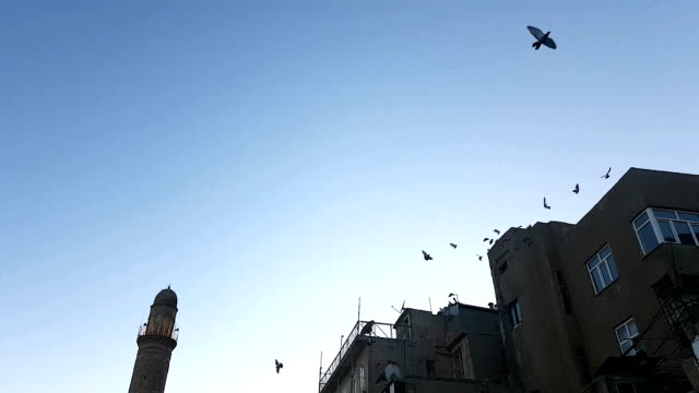 old mardin city, turkey - iraq stock videos & royalty-free footage