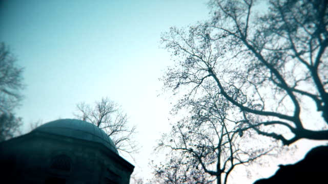 old muslim tomb and moody trees, camera turning right, lens softness on corners and grain - islam stock videos & royalty-free footage