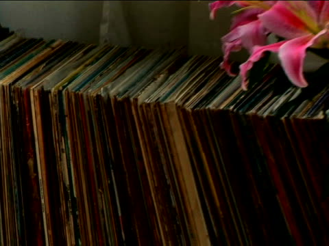old record collection - stargazer lily stock videos & royalty-free footage