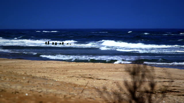 old shipwreck on north carolina beach - north carolina beach stock videos & royalty-free footage