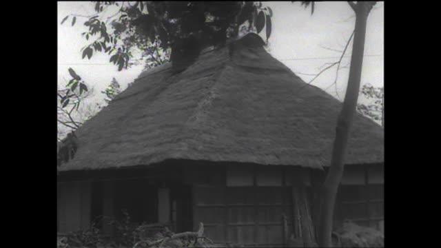 vídeos y material grabado en eventos de stock de 1961 old thatched house - techo de paja