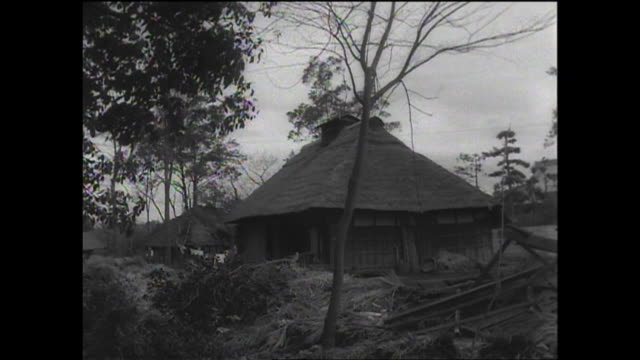 1961 old thatched house - strohdach stock-videos und b-roll-filmmaterial