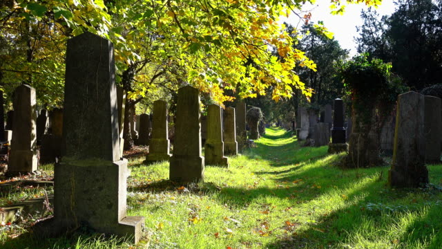 old tombstones in autumn - cemetery stock videos & royalty-free footage