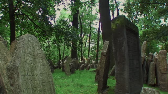 ms pan tu old tombstones in jewish cemetery, prague, czech republic - tomba luogo di sepoltura video stock e b–roll