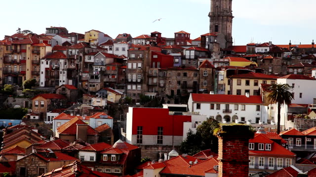 old town oporto - porto district portugal stock videos & royalty-free footage