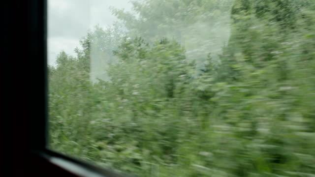 vidéos et rushes de vieux train de courir dans la campagne, irlande du nord - activité avec mouvement