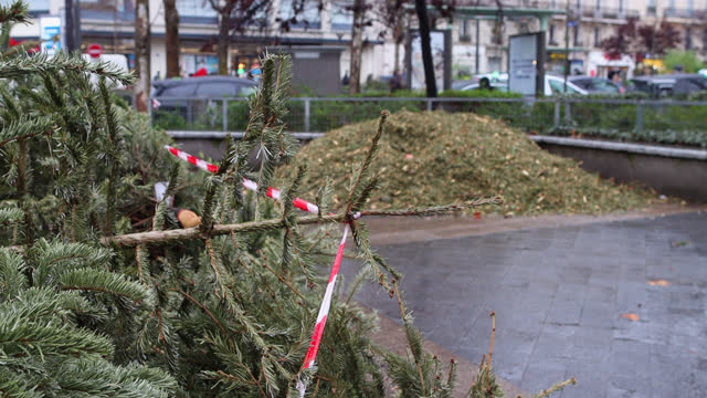 old used christmas trees stacked on the street - obsolete stock videos & royalty-free footage