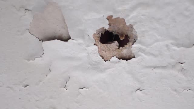 vídeos de stock, filmes e b-roll de velho teto branco com buracos causados por água pingando de vazamentos de telhado - exposto ao tempo