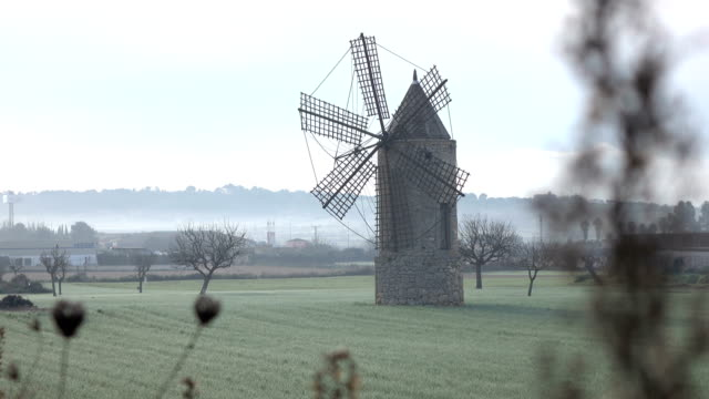 Old Windmill Standing in Fog-Filled Field