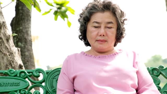 老婆は、公園のベンチで眠って、眠そうな祖母を落ちる。 - 目が回る点の映像素材/bロール
