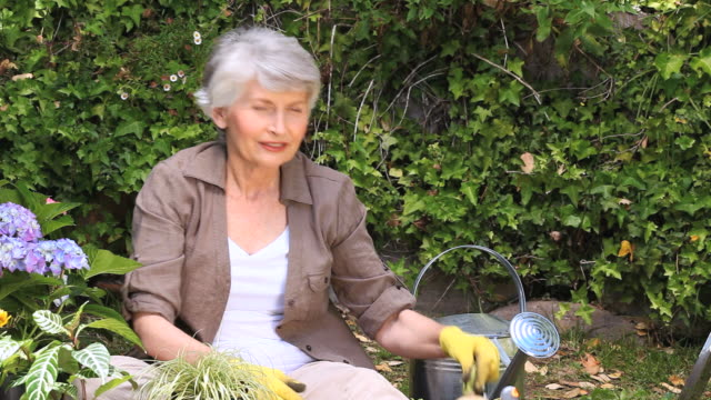 ms tu old woman gardening and smiling in garden / cape town, western cape, south africa - gardening glove stock videos & royalty-free footage