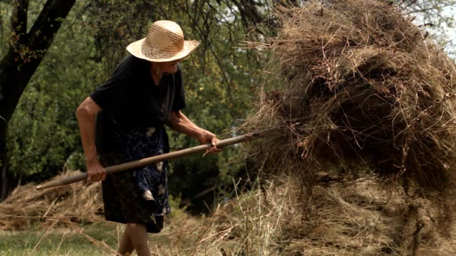 old woman working in the fields - one senior woman only stock videos & royalty-free footage