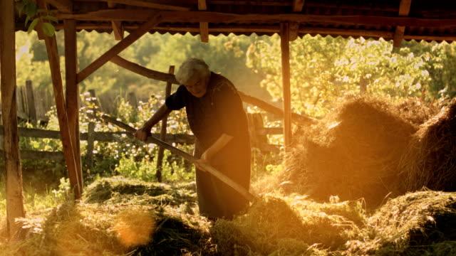 歳の女性のフィールド - 干し草点の映像素材/bロール