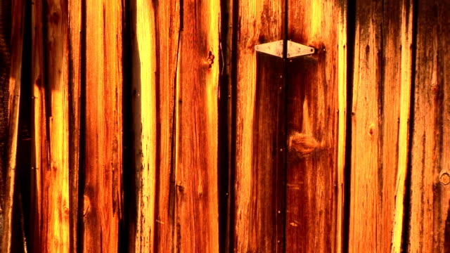 old wooden door - wood grain stock videos & royalty-free footage