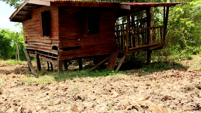 old wooden shack - shed stock videos & royalty-free footage
