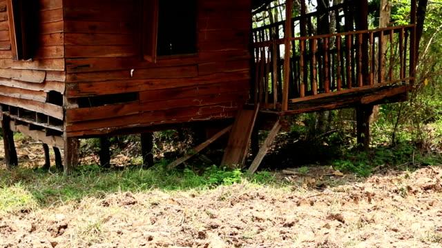 古い木造 - イングランド南西部点の映像素材/bロール