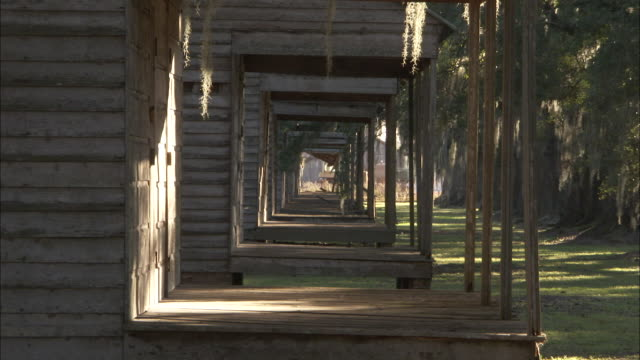 old wooden slave quarters rest on a tree lined avenue at the evergreen plantation. available in hd - sklaverei stock-videos und b-roll-filmmaterial