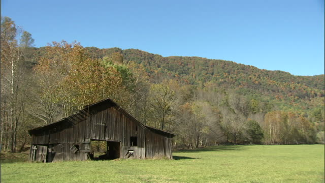 ws old wooden weathered pitched roof barn in grass pasture tree covered mountain bg americana farm farming vintage rural lifestyle - barn stock videos & royalty-free footage
