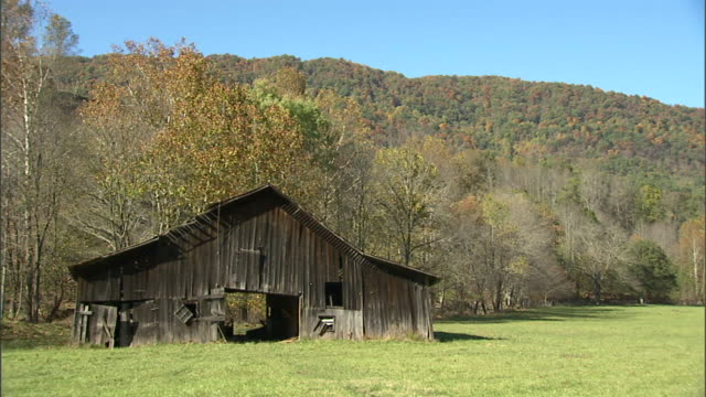 vídeos de stock, filmes e b-roll de old wooden, weathered, pitched roof barn in grass pasture, tree covered mountain bg. americana, farm, farming, vintage, rural, lifestyle. - exposto ao tempo