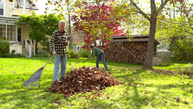 WS DS Older couple raking leaves / Tivoli, New York, United States