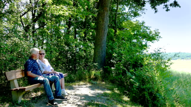 older couple sits on a bench in spring - tree area stock videos & royalty-free footage