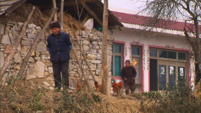 vídeos y material grabado en eventos de stock de ms older man and woman walking near farm house as chickens walk around/ guiyang, china - mujer con grupo de hombres