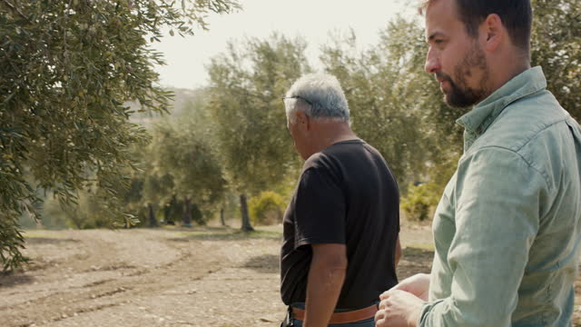 vídeos y material grabado en eventos de stock de olive farmer and son looking at trees on olive farm - 30 34 años