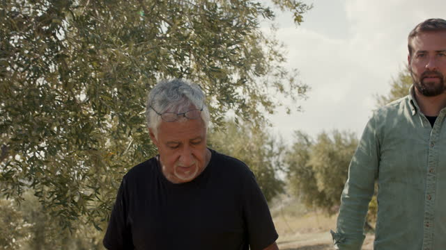 olive farmer and son walking in olive orchard - 30 34 years stock videos & royalty-free footage