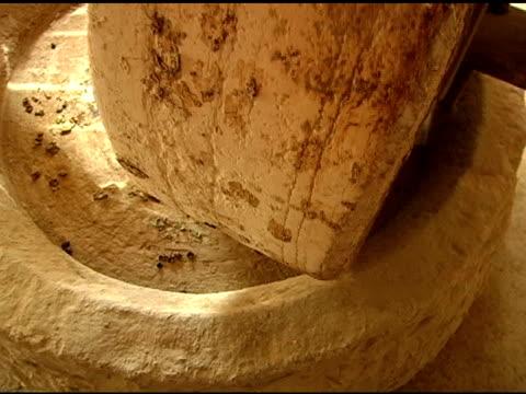 オリーブを押し - 聖地パレスチナ点の映像素材/bロール