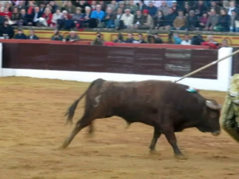 jose luis real just months after his left eye was ripped from his face in gruesome goring in zaragoza spanish matador juan jose padilla makes a... - bullfighter stock videos & royalty-free footage