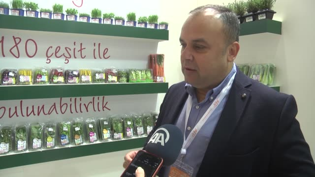 olivesized watermelons produced by a turkish agricultural firm was put on display at a food fair on wednesday the tiny watermelons were featured at... - mediterranean turkey stock videos and b-roll footage